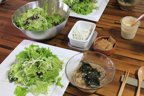 vege_dinner_141205_1.jpg